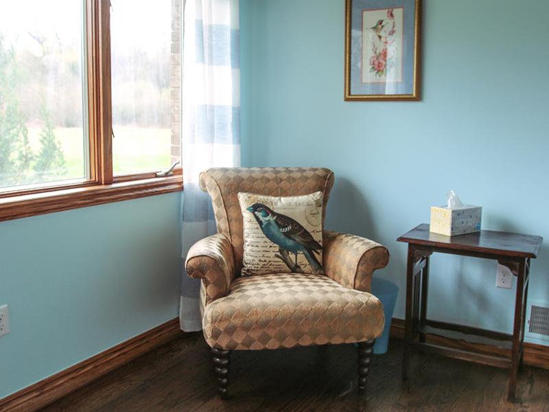 Corner chair with bluebird throw pillow